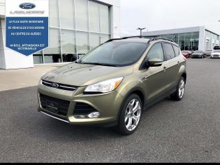 Used 2013 Ford Escape 4WD 4DR SEL for sale in Victoriaville, QC