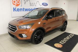 Used 2017 Ford Escape 3 MONTH DEFERRAL! *oac | SE | AWD | Moonroof | leather | Power Seat | Nav for sale in Edmonton, AB