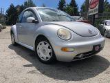 Photo of Silver 2001 Volkswagen New Beetle