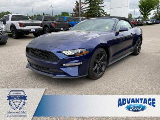 Used 2019 Ford Mustang EcoBoost Premium for sale in Calgary, AB