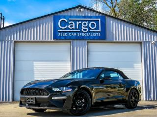Used 2019 Ford Mustang EcoBoost Premium for sale in Stratford, ON