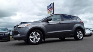 Used 2014 Ford Escape SE for sale in Brandon, MB