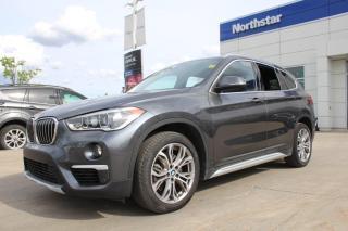 Used 2019 BMW X1 X1 XDRIVE/LEATHER/SUNROOF/HEATEDSEATS/BACKUPCAM for sale in Edmonton, AB