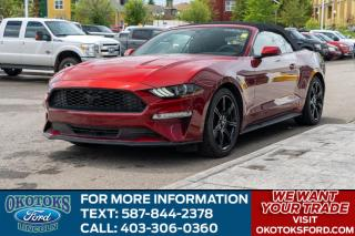 Used 2019 Ford Mustang EcoBoost Premium CONVERTIBLE/LEATHER/NAVIGATION/AUTO/ for sale in Okotoks, AB