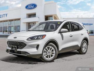 New 2020 Ford Escape 4DR SE FWD for sale in Winnipeg, MB