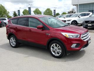 Used 2019 Ford Escape SE SUPER LOW KM! for sale in Winnipeg, MB