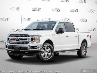 New 2019 Ford F-150 XLT for sale in Kitchener, ON