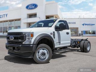 New 2020 Ford F-550 Super Duty DRW XL for sale in Winnipeg, MB