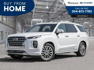 New 2020 Hyundai PALISADE for sale in Winnipeg, MB