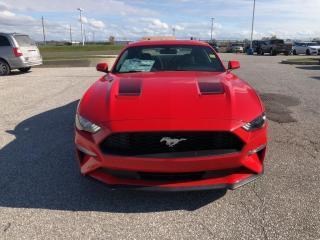 New 2020 Ford Mustang EcoBoost for sale in Leamington, ON