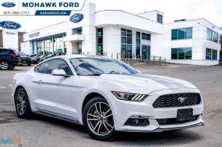 Used 2017 Ford Mustang EcoBoost for sale in Hamilton, ON