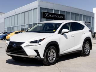 New 2020 Lexus NX 300h Standard for sale in Winnipeg, MB