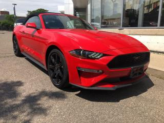 Used 2019 Ford Mustang EcoBoost Premium for sale in Mississauga, ON