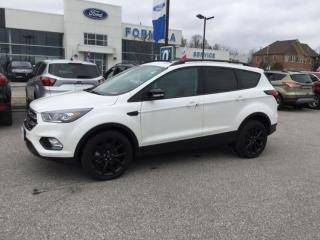 Used 2019 Ford Escape Titanium - 2.0L Ecoboost Engine, 6-Speed Automatic for sale in Pickering, ON