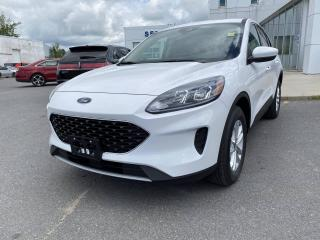 New 2020 Ford Escape SE for sale in Kingston, ON