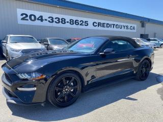 Used 2019 Ford Mustang EcoBoost MUSTANG CONVERTIBLE LEATHER NAVIGATION LOADED !!! for sale in Saint Paul, MB