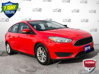 Used 2016 Ford Focus SE Manual Cloth/Alloy Wheels/Heated Seats for sale in St Thomas, ON