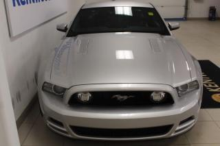 Used 2014 Ford Mustang 3 MONTH DEFERRAL! *oac | for sale in Edmonton, AB