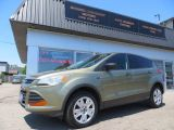 Photo of Ginger Ale 2014 Ford Escape