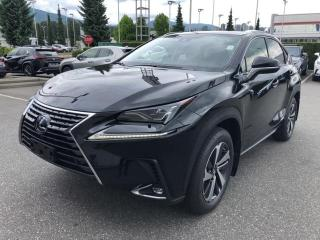 New 2020 Lexus NX 300h Executive for sale in North Vancouver, BC