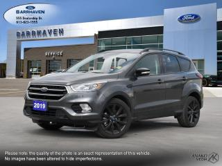 Used 2019 Ford Escape Titanium for sale in Ottawa, ON