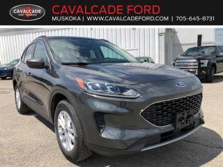 New 2020 Ford Escape SE for sale in Bracebridge, ON