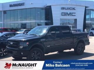 Used 2013 Ford F-150 for sale in Winnipeg, MB