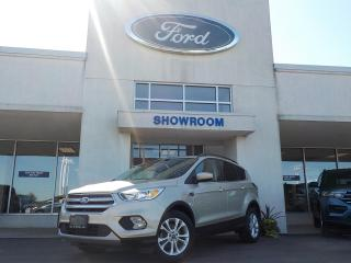 Used 2018 Ford Escape SE for sale in Mount Brydges, ON