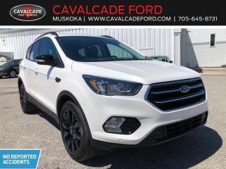 Used 2019 Ford Escape Titanium for sale in Bracebridge, ON