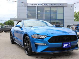 Used 2019 Ford Mustang EcoBoost Premium NAV | AUTO | BLACK ACCENT PKG for sale in Winnipeg, MB