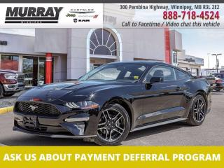 Used 2019 Ford Mustang Ecoboost *Rare manual transmission   Local trade* for sale in Winnipeg, MB
