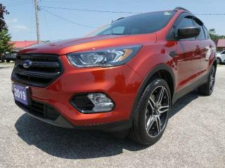 Used 2019 Ford Escape SEL | Remote Start | Power Lift Gate | Heated Seats for sale in Essex, ON