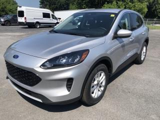 Used 2020 Ford Escape SE AWD for sale in Cornwall, ON