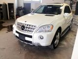 Photo of White 2010 Mercedes-Benz M-Class