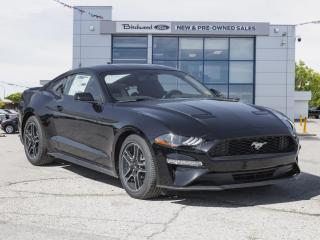 New 2020 Ford Mustang EcoBoost DUAL ZONE TEMP | 10-SPEED AUTO for sale in Winnipeg, MB