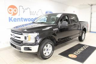 Used 2019 Ford F-150 XLT Super Crew 4x4 | Great Shape | Backup camera | Hands Free for sale in Edmonton, AB