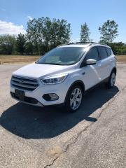 Used 2017 Ford Escape Titanium for sale in Windsor, ON
