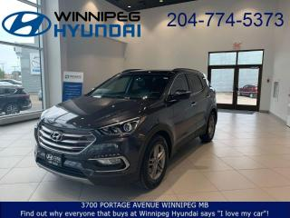 Used 2017 Hyundai Santa Fe Sport Luxury for sale in Winnipeg, MB