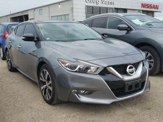 Used 2016 Nissan Maxima SL for sale in Cambridge, ON