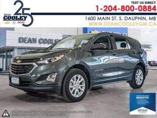 Used 2019 Chevrolet Equinox LS for sale in Dauphin, MB