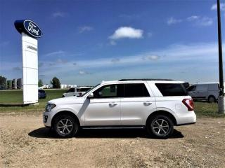 Used 2019 Ford Expedition XLT for sale in Langenburg, SK