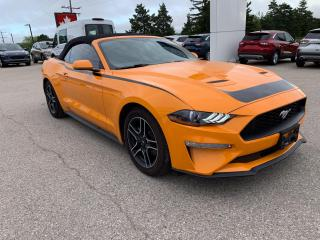 Used 2018 Ford Mustang EcoBoost | Bluetooth | Navigation for sale in Harriston, ON