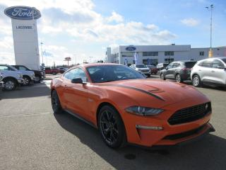 New 2020 Ford Mustang EcoBoost?? Premium for sale in Lacombe, AB