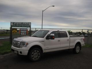 Used 2014 Ford F-150 PLATINUM for sale in Thunder Bay, ON