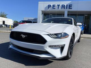 New 2020 Ford Mustang EcoBoost for sale in Kingston, ON