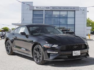 New 2020 Ford Mustang EcoBoost Premium NAV | BLACK ACCENT PKG for sale in Winnipeg, MB
