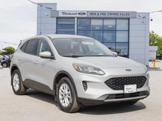 New 2020 Ford Escape SE NAV   CO-PILOT   ADAPTIVE CRUISE for sale in Winnipeg, MB