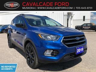 Used 2019 Ford Escape SE for sale in Bracebridge, ON