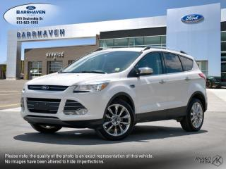 Used 2016 Ford Escape SE for sale in Ottawa, ON