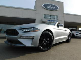 New 2020 Ford Mustang for sale in Mount Brydges, ON